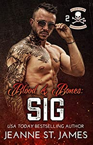 Blood & Bones: Sig (Blood Fury MC, #2)