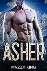 Asher (Hawk Valley Mountain Men, #1)