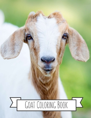 Goat Gifts for Toddlers, Kids ages 4