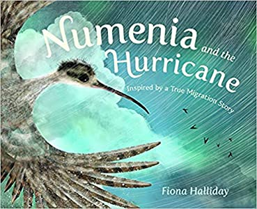 Numenia and the Hurricane: Inspired by a True Migration Story
