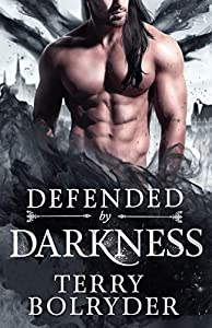 Defended by Darkness (Wings, Wands and Soul Bonds, #2)