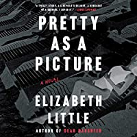 Pretty as a Picture: A Novel