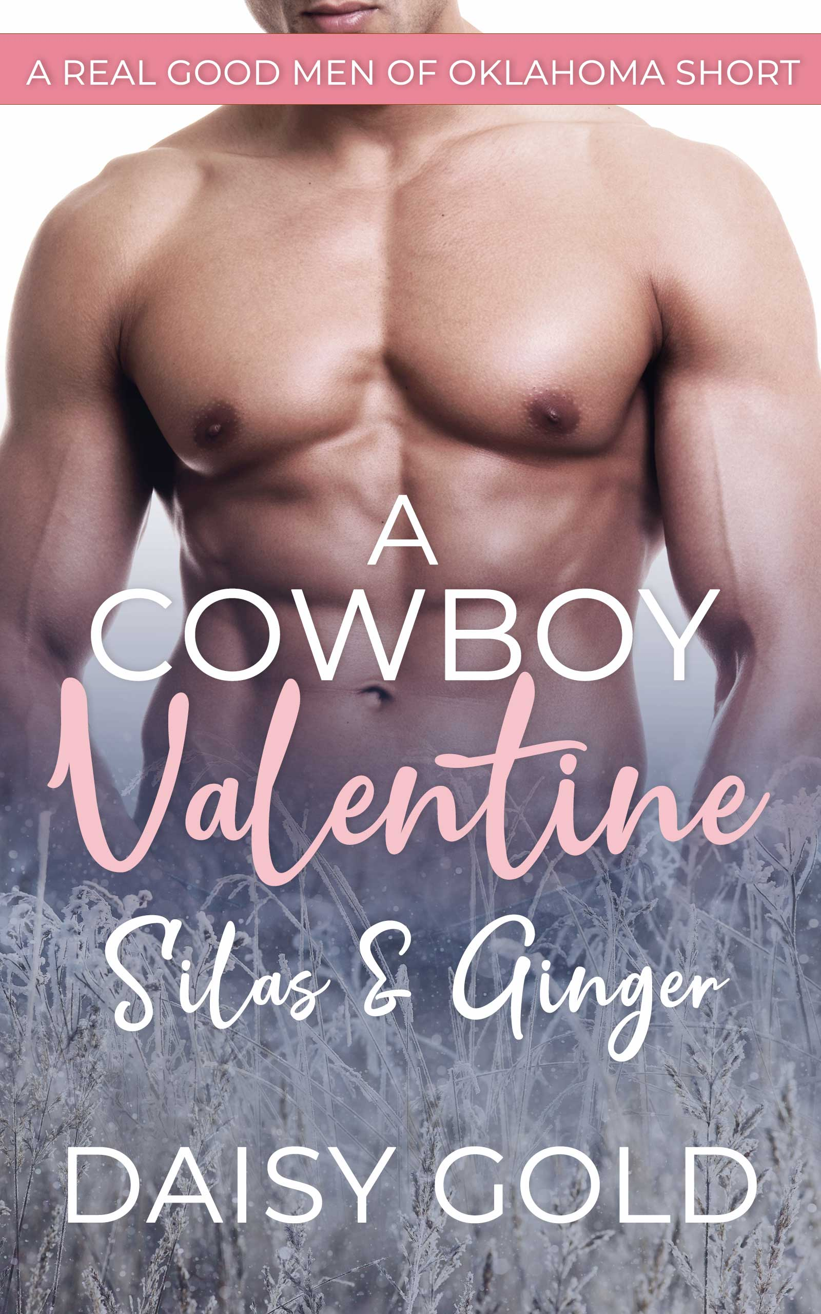 A Cowboy Valentine - Daisy Gold