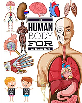 The Human Body for Children: My first interactive human body for kids ages 4-8, How it works.