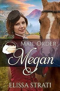 Mail Order Megan (Widows, Brides, and Secret Babies, #11)