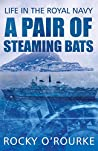 A PAIR OF STEAMING BATS: Life in the Royal Navy