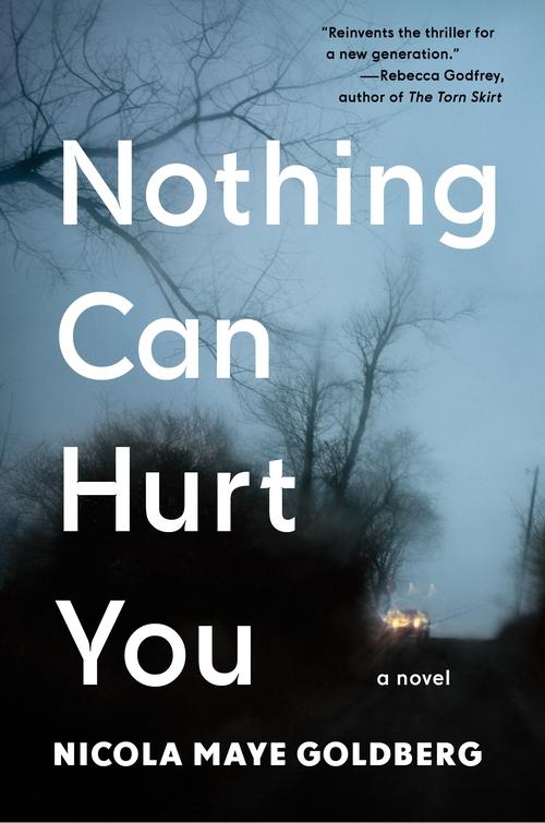 Nothing Can Hurt YoubyNicola Maye Goldberg