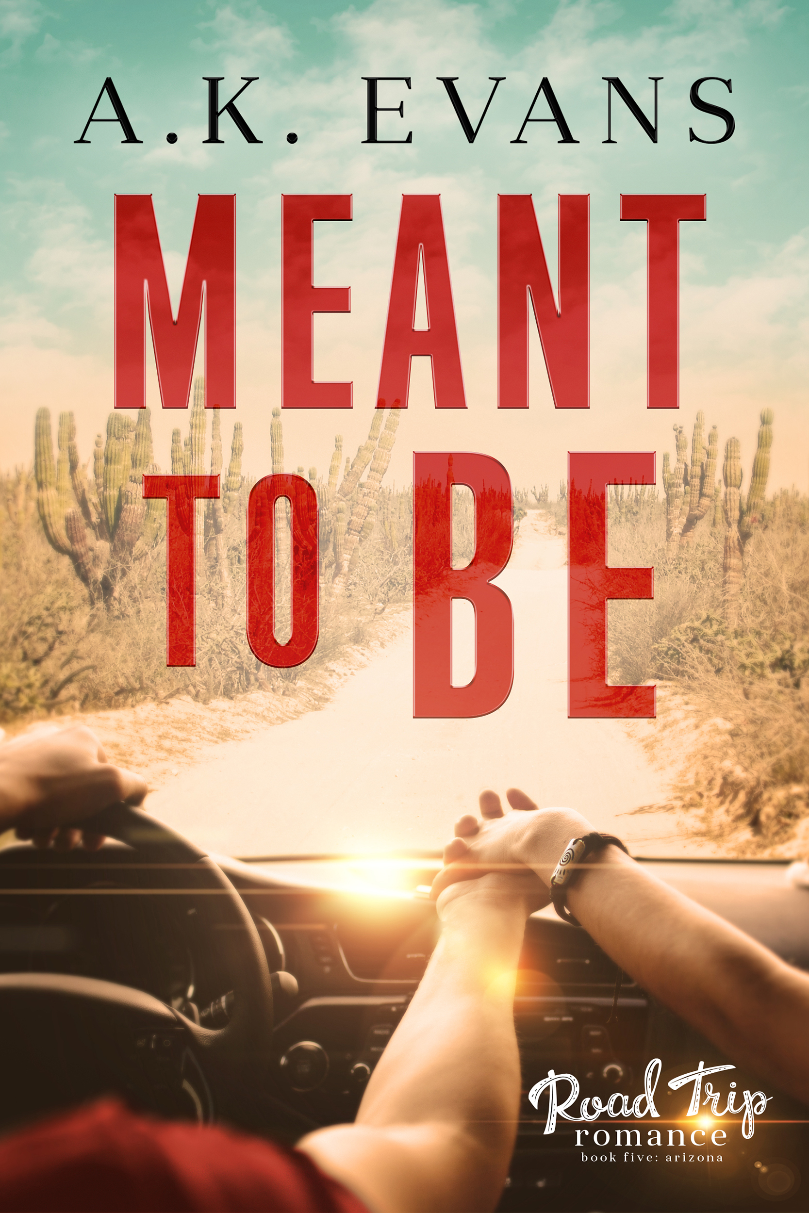 Meant to Be (Road Trip Romance Book 5) - A.K. Evans