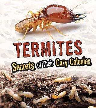 Termites: Secrets of Their Cozy Colonies