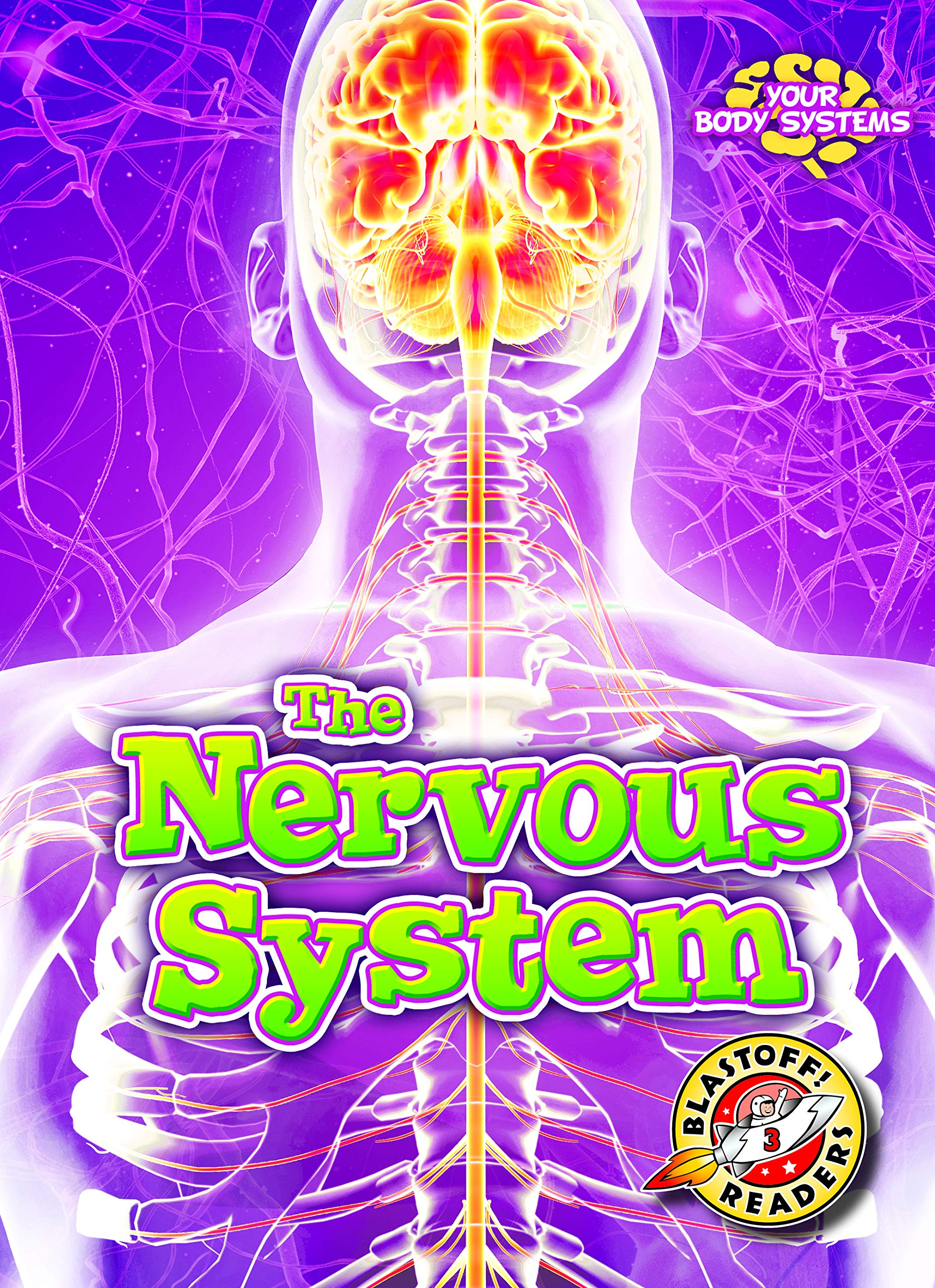 The Nervous System (Your Body - How It Works)