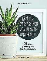 Arrêtez d'assassiner vos plantes d'intérieur!