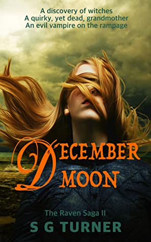 December Moon Part Ii Of The Raven Saga By Suzy Turner