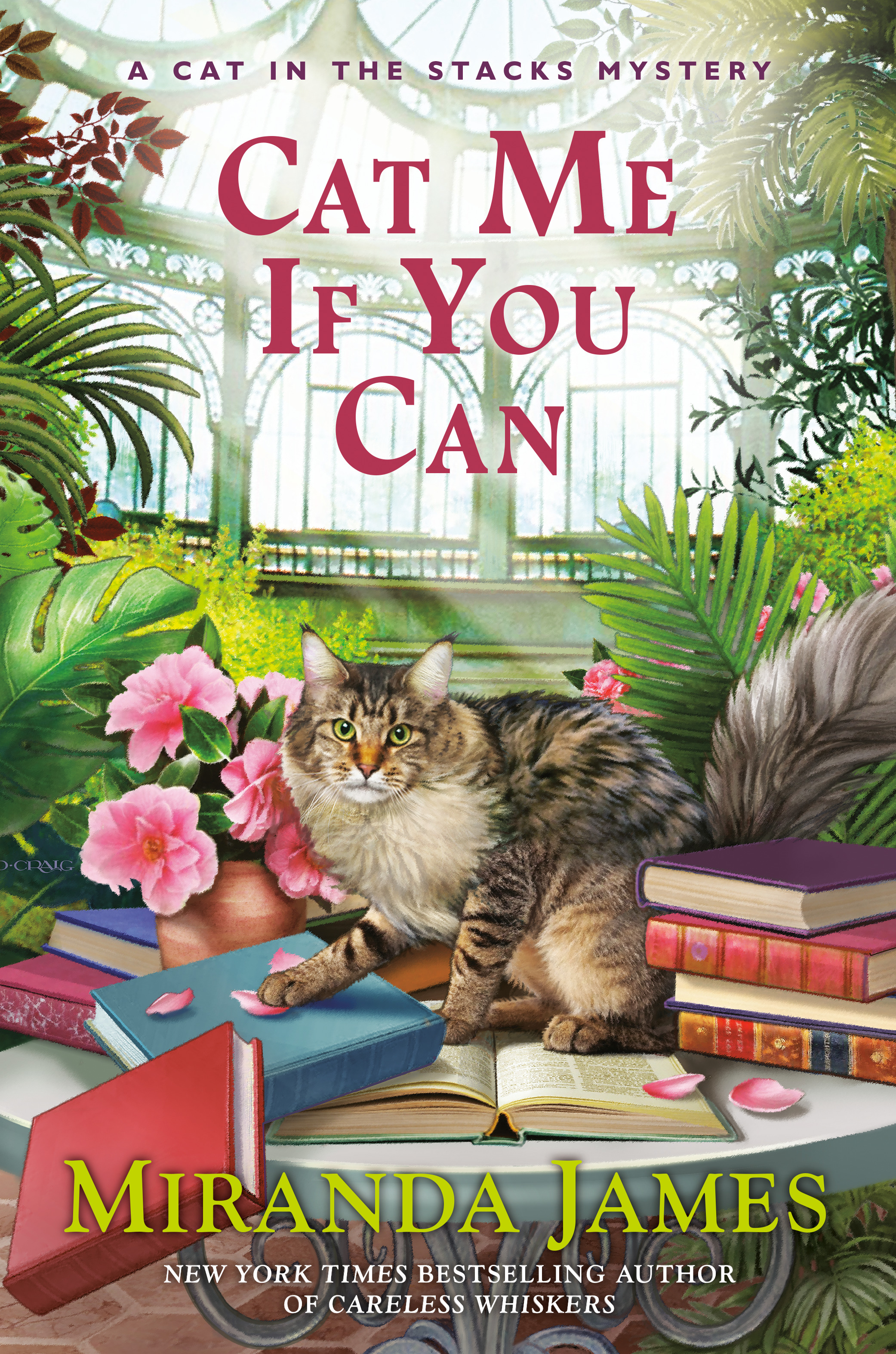Cat Me If You Can (Cat in the Stacks Mystery #13)