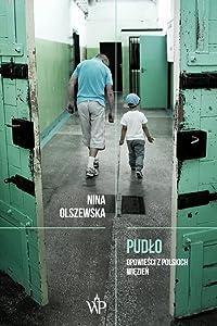 Pudło. Opowieści z polskich więzień