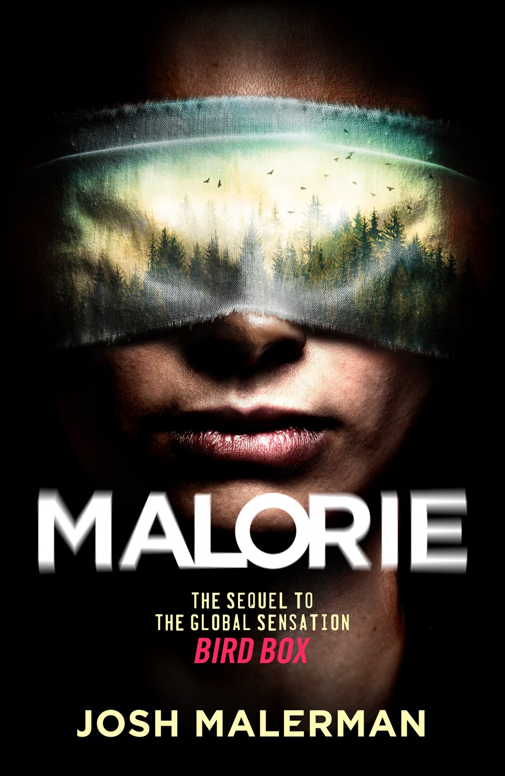 Malorie by Josh Malerman