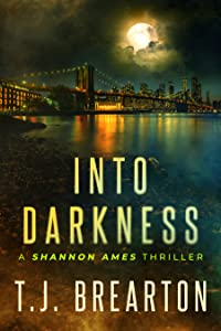 Into Darkness (Shannon Ames, #1)