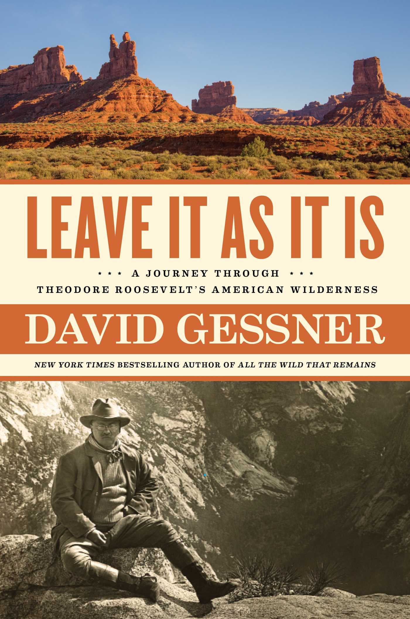 Leave It As It Is by David Gessner