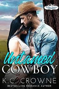 Untamed Cowboy (Rainbow Canyons Cowboys, #1)