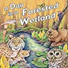 A Day in a Forested Wetland