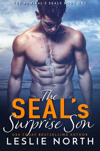 The SEAL's Surprise Son (The Admiral's SEALs #1) - Leslie North