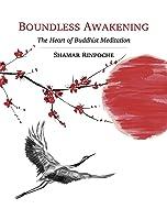 Boundless Awakening: The Heart of Buddhist Meditation