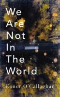 We Are Not in the World