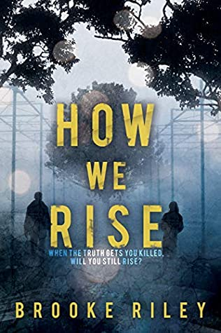 How We Rise by Brooke Riley