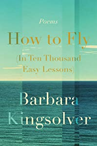 How to Fly: In Ten Thousand Easy Lessons