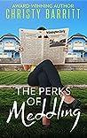 The Perks of Meddling (The Sidekick's Survival Guide #2)