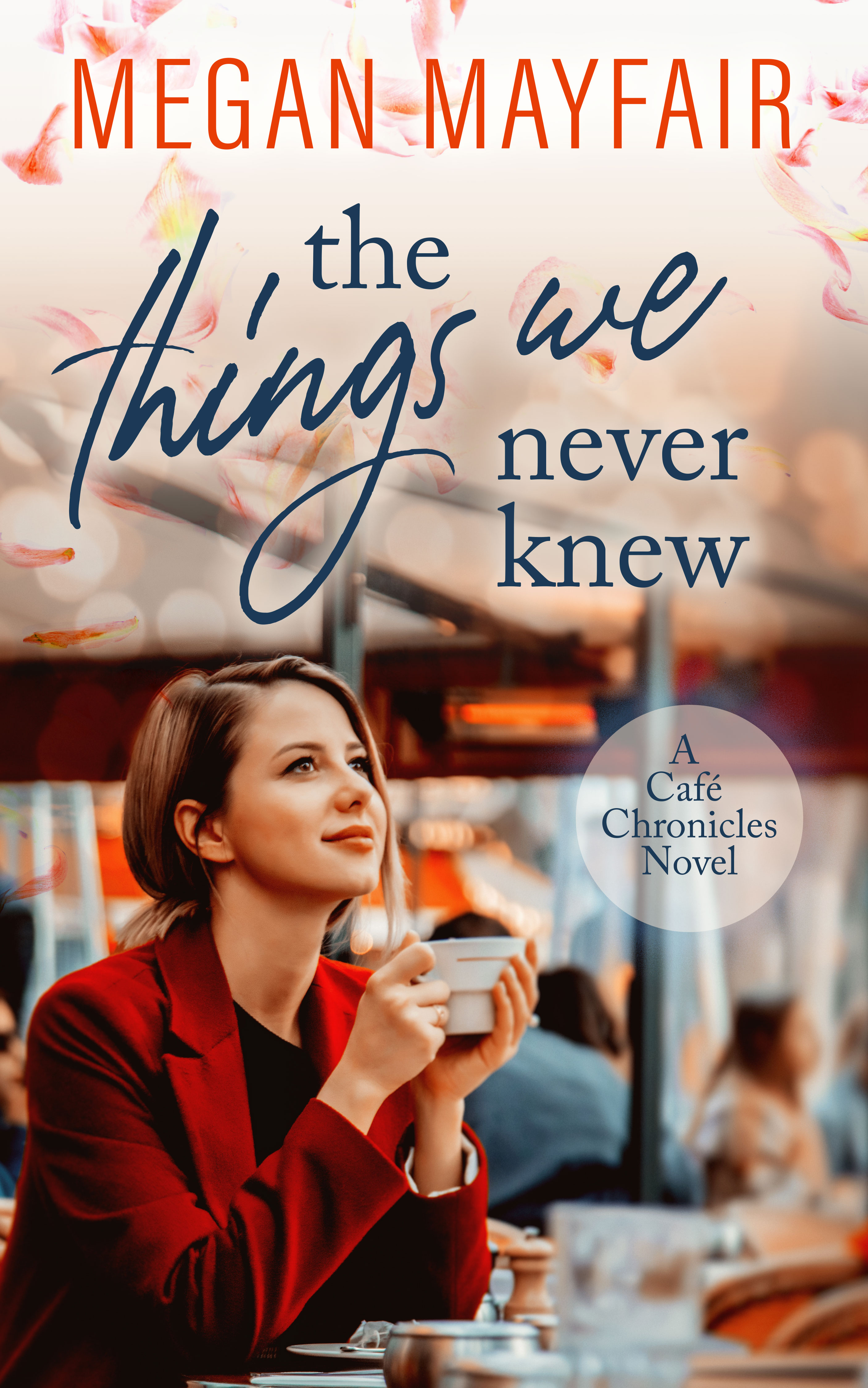The Things We Never Knew by Megan Mayfair