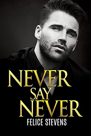 Never Say Never (Lost in New York, #3)