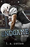 The Endgame Is You (Rixon Raiders, #4)