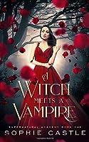 A Witch Meets A Vampire (Supernatural Academy)