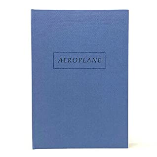 Aeroplane, Or, How He Talked To Himself As If Reciting Poetry