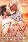 Two of a Kind (Haven Bay, #2)
