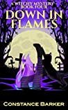 Down in Flames (Witches Be Crazy #5)
