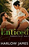 Enticed (Emerson Falls #2)