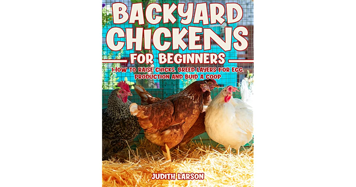 Backyard Chickens for Beginners: How to Raise Chicks ...
