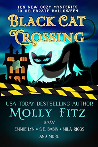 Black Cat Crossing: A Collection of 11 Cozy Mysteries to Celebrate Halloween