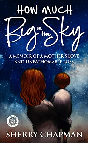 How Much Big Is the Sky by Sherry  Chapman