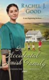 His Accidental Amish Family (Unexpected Amish Blessings Book 3)