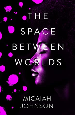 Book cover for The Space Between Worlds