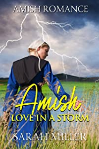 Amish Love in a Storm