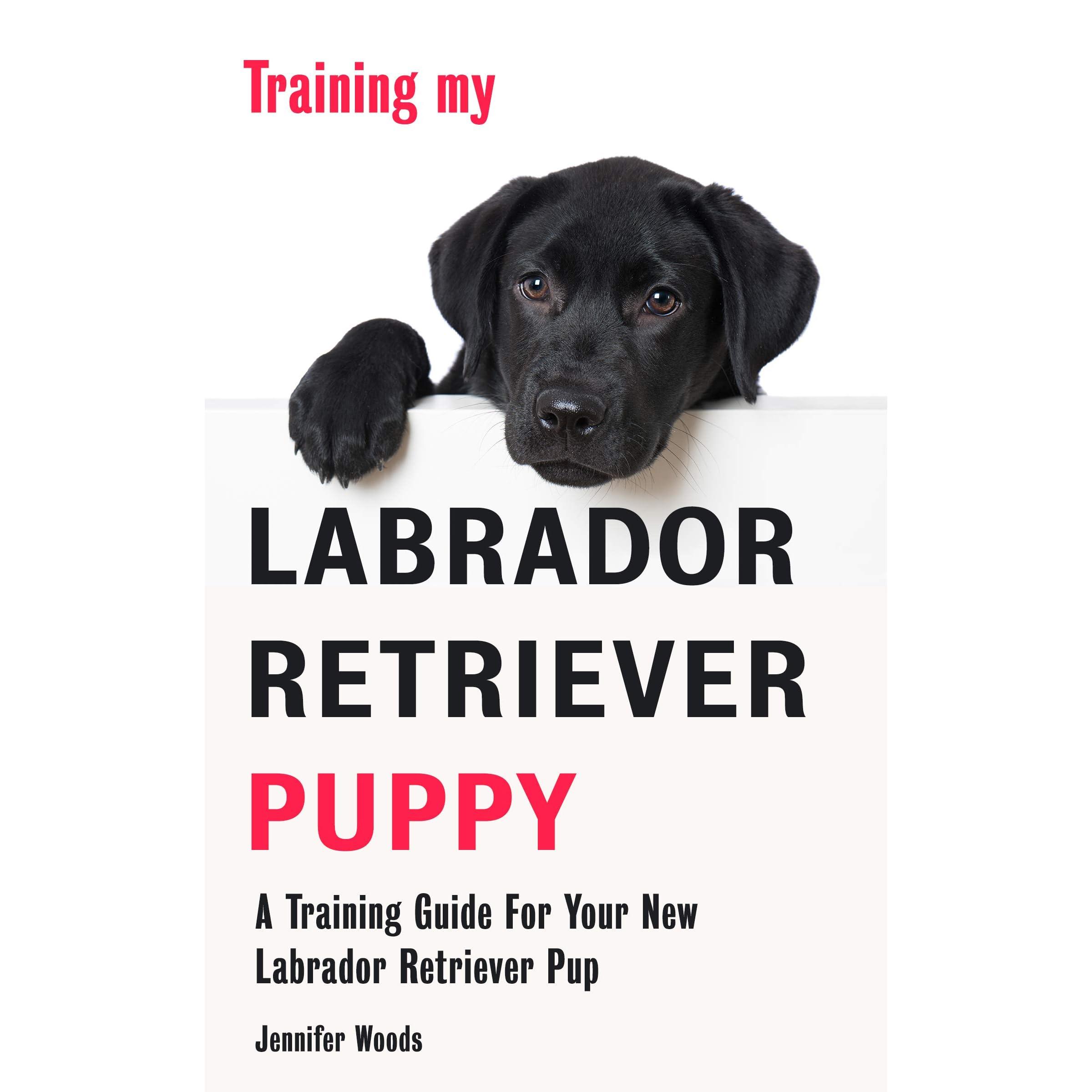 Training My Labrador Retriever Puppy A Training Guide For Your New Labrador Retriever Pup By Jennifer Woods