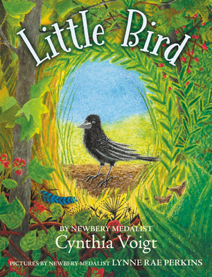 Little BirdbyCynthia VoigtLynne Rae Perkins Illustrator
