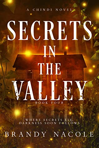 Secrets in the Valley (Chindi Series, #4)