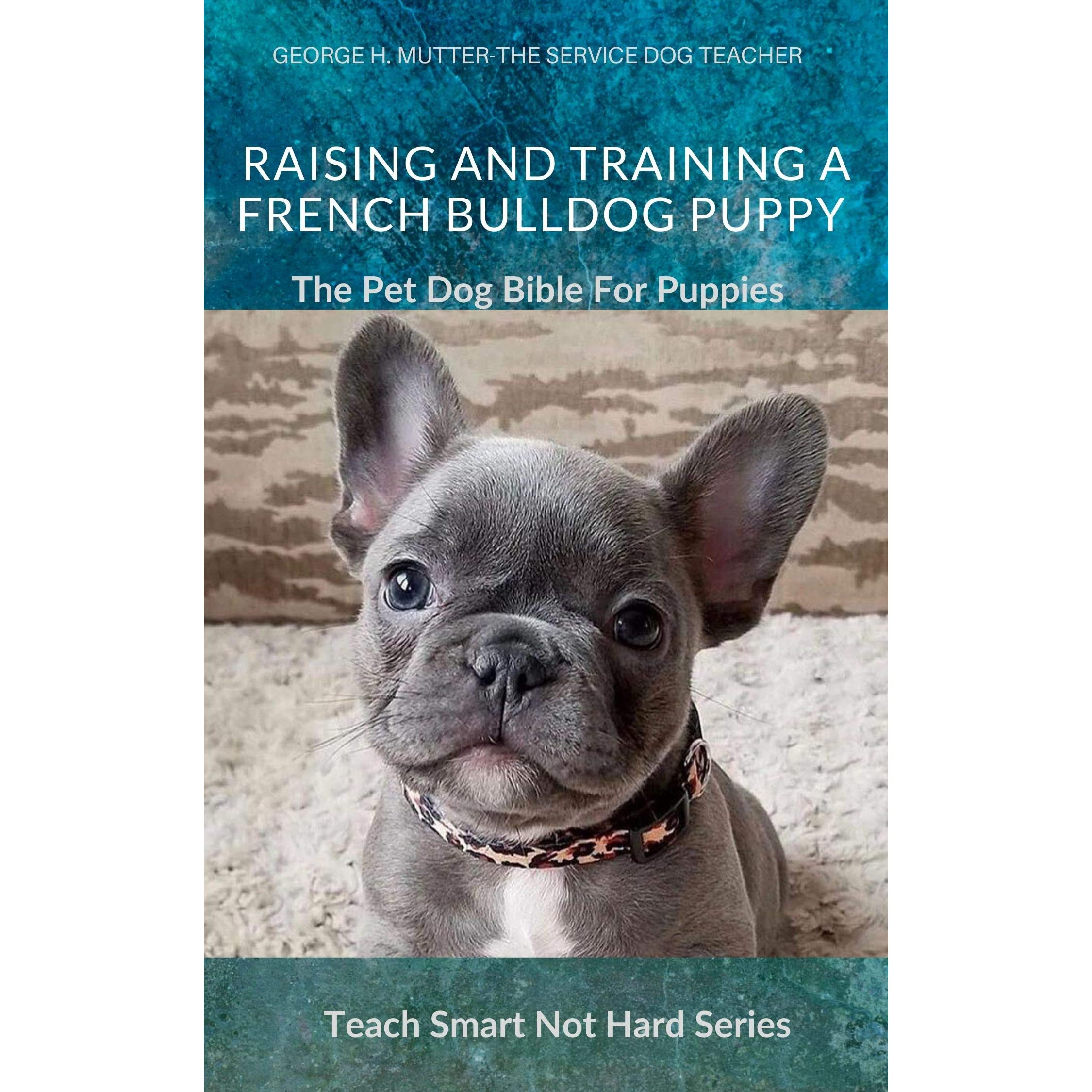 Raising And Training A French Bulldog Puppy The Pet Dog Bible For Puppies By George H Mutter The Service Dog Teacher
