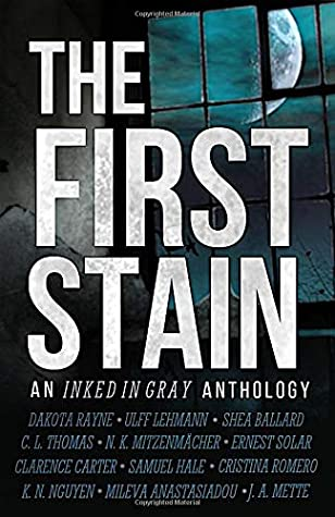The First Stain by Dakota Rayne