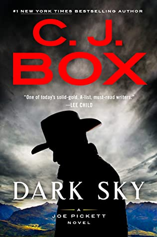 Dark Sky (Joe Pickett, #21)