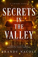 Secrets in the Valley (Chindi Series Book 4)